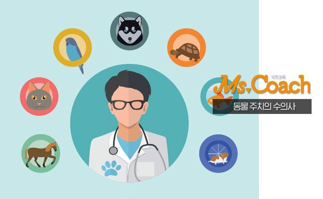 대교공식블로그 :: 10년후 유망직업 수의사 되는법은 무엇일까요?
