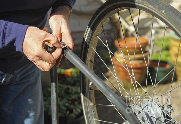 Fixing Flat Bike Tire By Patricia Hofmeester