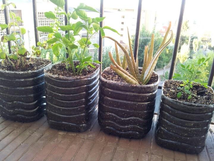 Macetas recicladas plants pinterest - Ideas de macetas ...