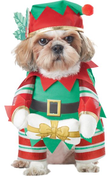 Elf Pup Dog Costume | Jokers Masquerade