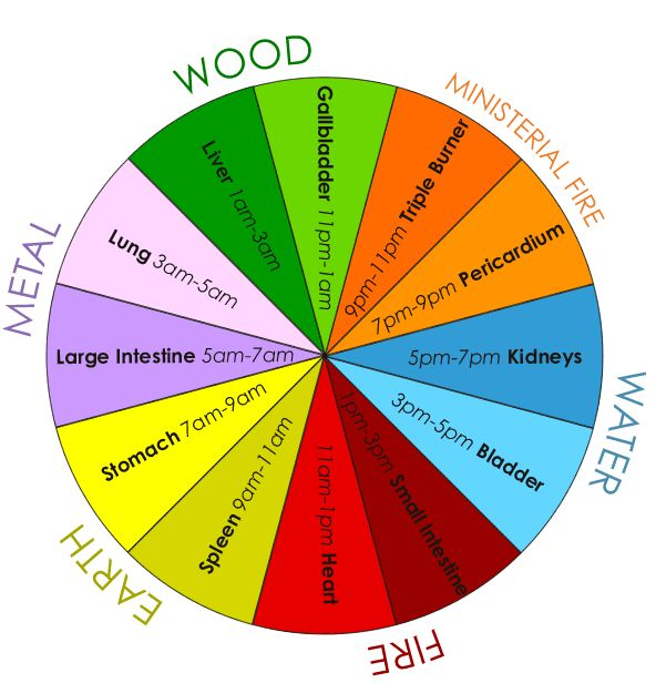 24-hour Organ Qi Cycle  Make sure to go to website to check this out. There you can Roll your cursor over the Organ names within the colour wheel to learn more about the emotions connected with each organ.