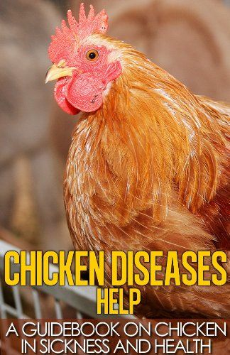 Chicken Diseases Help - A Quick Guidebook on Chickens in Sickness and Health