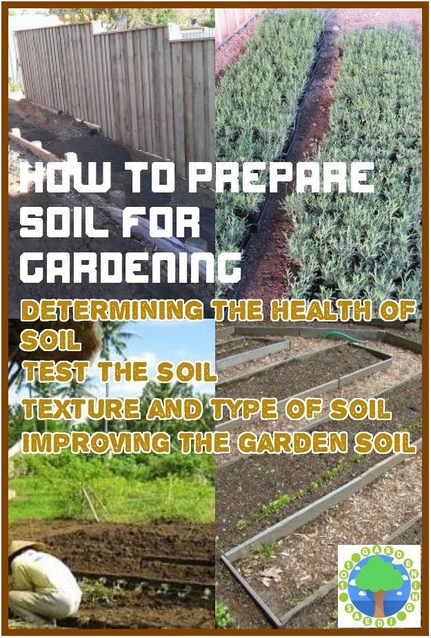 0bea1c7a9a725fa63517065deff268be - How To Prepare Georgia Soil For Gardening
