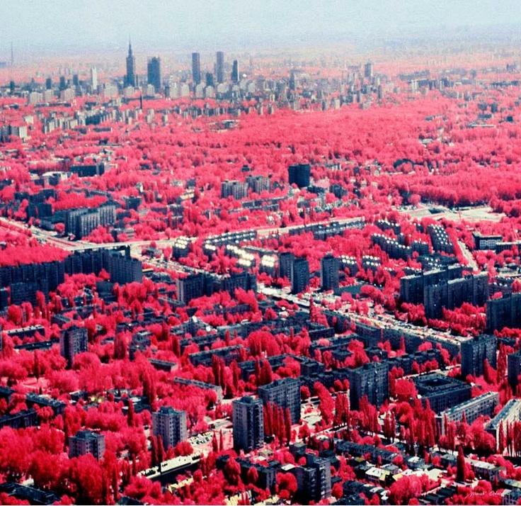 Our city in infrared // Nasze miasto w podczerwieni - Marek Ostrowski