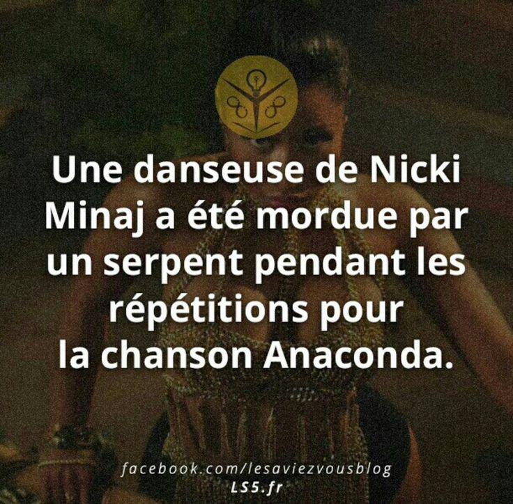 Une danseuse de Nicki minaj a été mordue par un serpent pendant les répétitions pour la chanson Anaconda