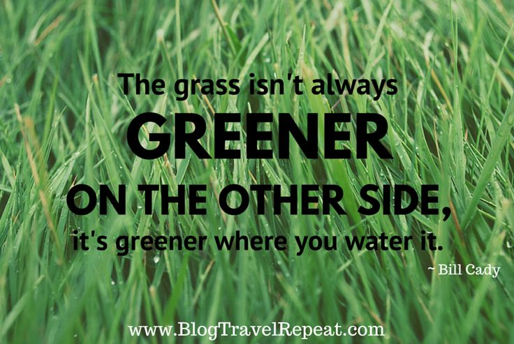 Grass Is Always Greener Quotes: 621 Best Images About Motivational And Inspirational