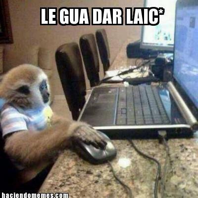 Le gua dar laic #meme