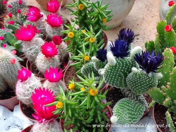 Brilhos da Moda: Flores, uma maravilha da natureza # 43