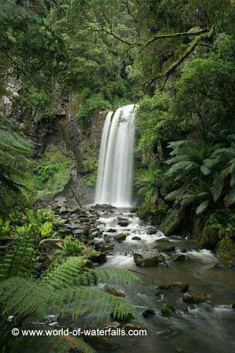 Hopetoun Falls  Great Otway National Park, Victoria, Australia