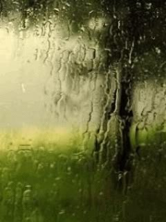 I absolutely love to get lost in my daydreams as I look out a rain blurred window...ARH