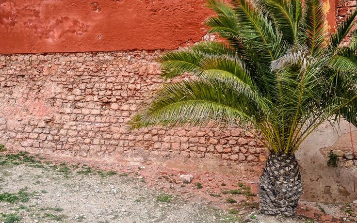 #Mediterrane #Anblicke auf #Ibiza © Carina Dieringer/modelirium.at