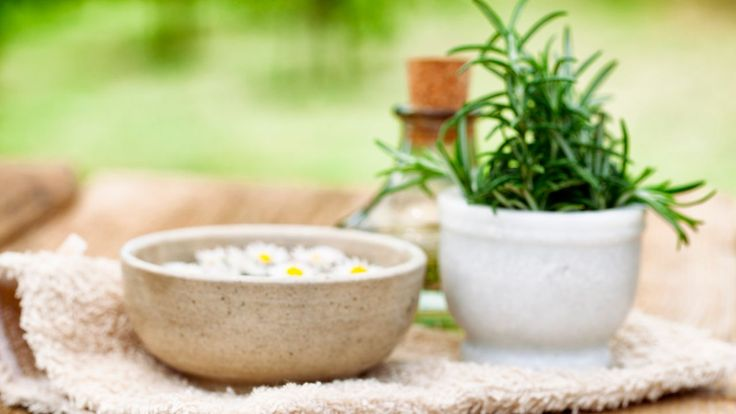 Remedios naturales para pulgas y garrapatas - Baño
