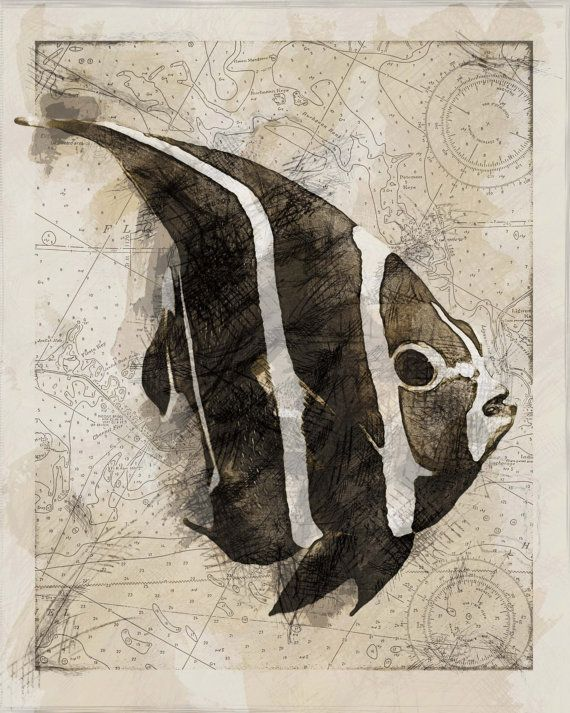 best 25 fish drawings ideas on pinterest fish