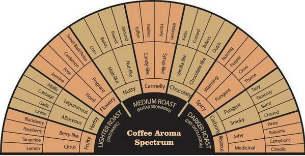 This is a fantastic chart for coffee pairings. (Check out this blog from a Starbucks Coffee Master)