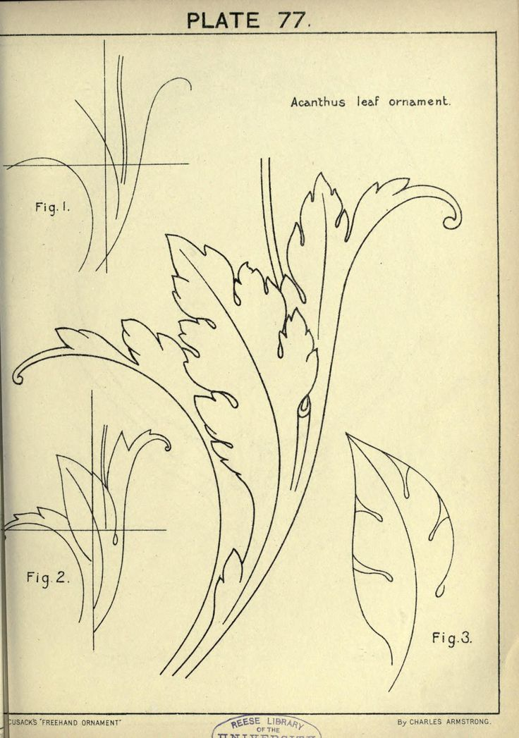 Cusack's freehand ornament, 1895. Plate 77                                                                                                                                                     Mehr