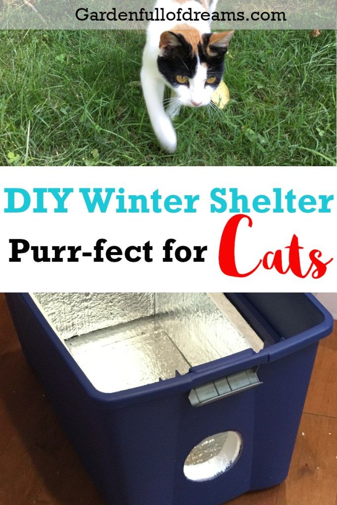 3987c51d2 DIY Outdoor Cat Shelter | Garden Full of Dreams Blog Posts | Outdoor ...