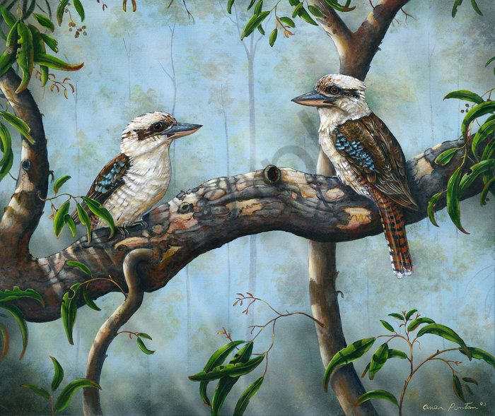 Queensland Wildlife Artists Society Inc Wall Art