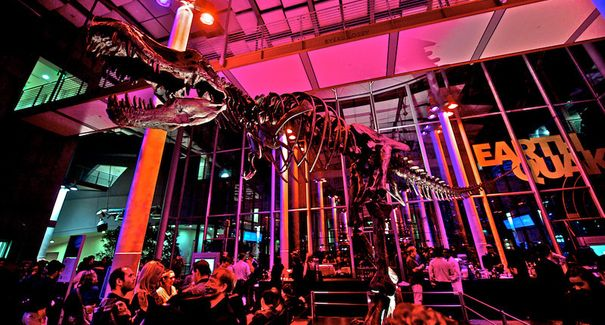 Cal Academy Nightlife! 21+, specialty cocktails, good music, fun games, annd... SCIENCE!! - Photo by Tim Williamson