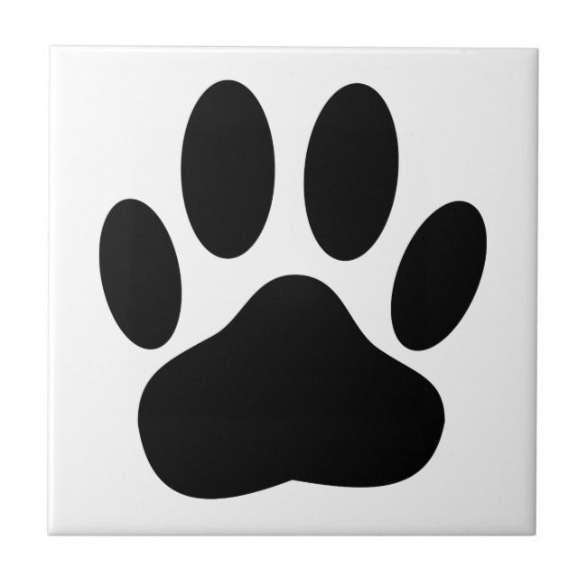Dog Pawprint Tile Zazzle Com Puppy Room Dog Design Cartoon Dog