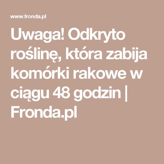 Uwaga! Odkryto roślinę, która zabija komórki rakowe w ciągu 48 godzin   Fronda.pl