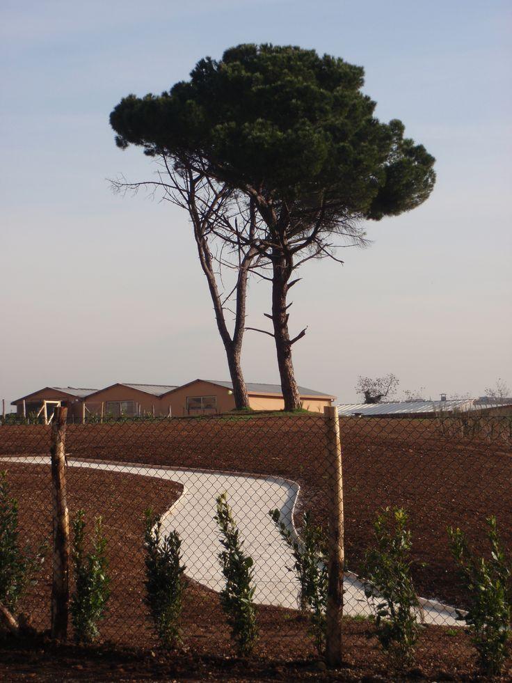 an eclectic park: the ex SNIA park in Largo Preneste, Rome. photo by Sebastian Di guardo