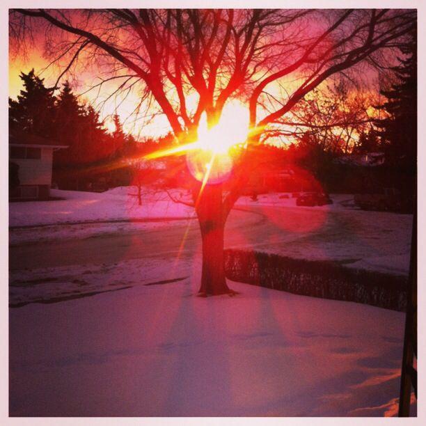 December sunrise in Calgary