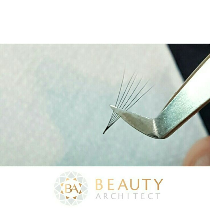 Fanning 6D lashes. Eyelash Extensions  Volume lashes  Russian Volume
