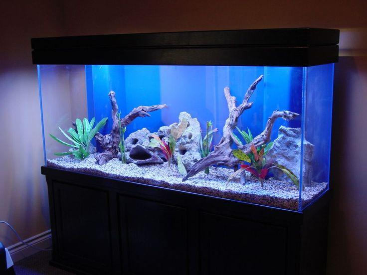 Best Fish Tank Decoration Design Ideas ~ http://www.lookmyhomes.com/amazing-fish-tank-decoration/