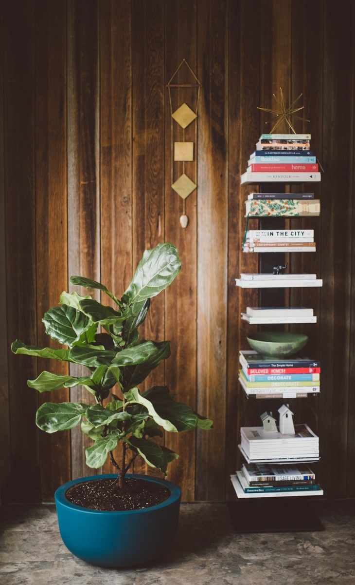 I heart The Cup Planter and Sapien Bookcase from DWR. #DesignWithinReach Photo: Natalie Puls  Styling: Traci French