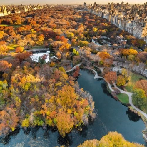 Autumn morning view of Central Park. Yesterdays view from the... http://ift.tt/2inyQWX