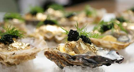 The cultivated Knysna Oyster