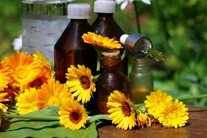 Fabriquer un macérât huileux de plantes médicinales
