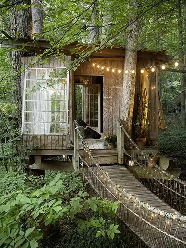 Future Tree Houses best 20+ awesome tree houses ideas on pinterest | tree houses