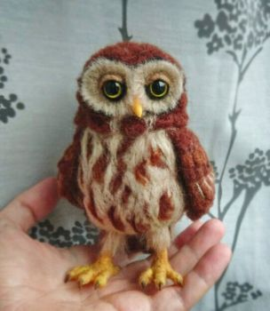 Owl in progress by SkojSkoj