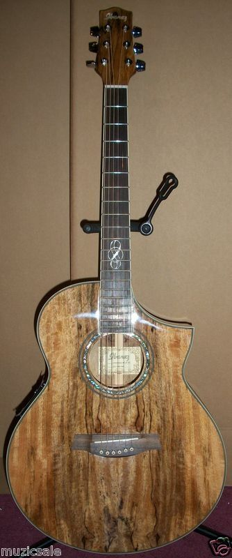 Ibanez Exotic Woods Acoustic Electric Guitar