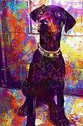 """New artwork for sale! - """" Dog Doberman Animals Animal Ollie  by PixBreak Art """" - http://ift.tt/2uKi5Kd"""
