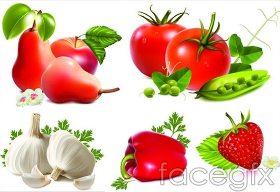 Fruits and vegetables tomatoes, strawberry vector