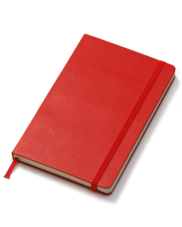 """Irene keeps 2 diaries. The red one is """"planted"""" in the basement for her husband to read. He suspects she's having an affair."""