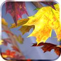 Autumn Tree Live Wallpaper v1.2 APK ~ Free Games and Application for Android