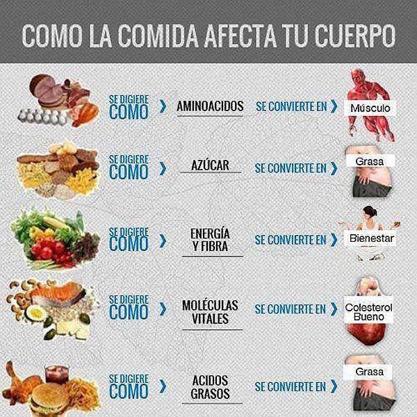 como la comida afecta al cuerpo | salud / belleza