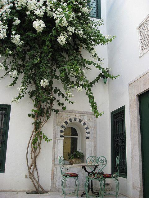 Courtyard with White Bougainvillea by Victoria Carpenter, via Flickr. courtyard of Hotel Dar el Medina, Tunis