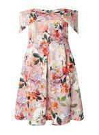 Womens DP Curve Plus Size Multi Coloured Bardot Fit And Flare Dress- Multi Colour