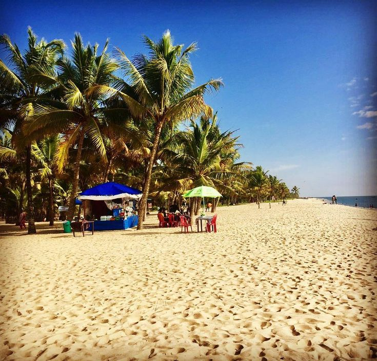 #Alleppey #beaches is known throughout #Kerala as one of the best beaches owing to its intrinsic natural #beauty. Alleppeys celebrated past as a prominent port city is aptly portrayed by the 137-year-old pier that stretches out in to the #sea. The ravishing beauty of the beach is further accentuated by dense palm groves an ancient lighthouse and a beautiful garden at the sea shore. Relaxing and picnicking at the beach are the preferred activities of visiting…