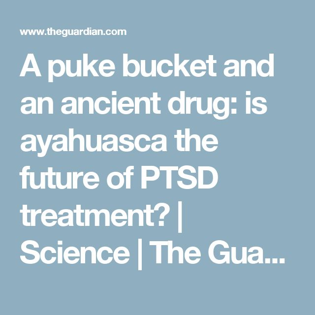 A puke bucket and an ancient drug: is ayahuasca the future of PTSD treatment? | Science | The Guardian