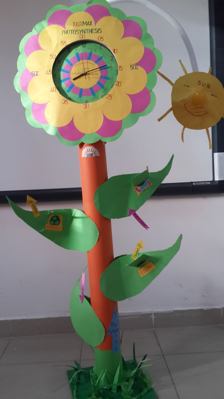 My Project is about Photosynthesis and Time ( Ishik college )