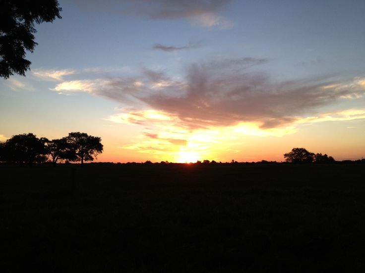 Just one of the many beautiful sunsets over the plains of Lilayi and some of the best sundowners you will experience ;)