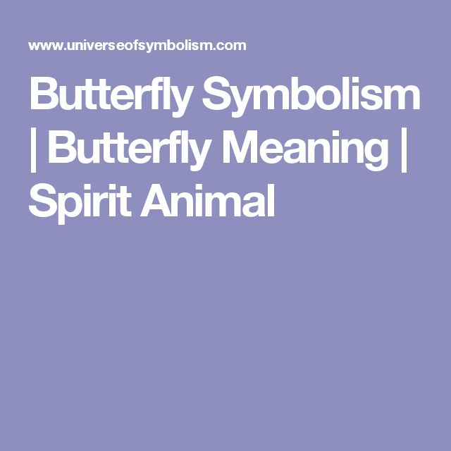 Butterfly Symbolism | Butterfly Meaning | Spirit Animal