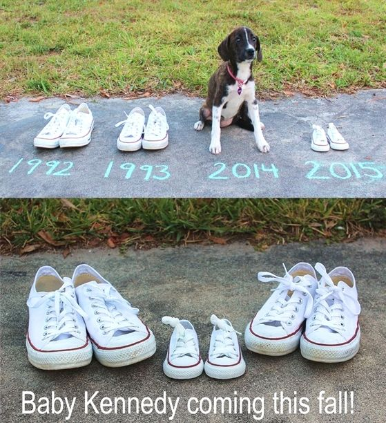 #BabyAnnouncement #Pregnancy #puppiesandbabies How we announced our first pregna…