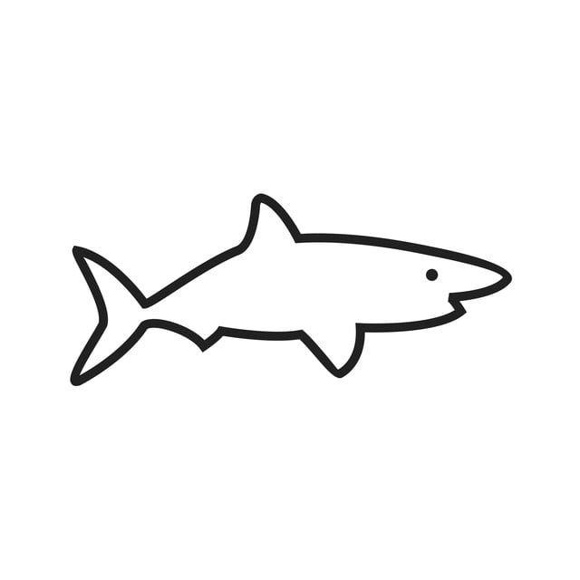 ไอคอนเส นฉลาม ปลาฉลาม ปลา ปลาวาฬภาพ Png และ เวกเตอร สำหร บการดาวน โหลดฟร ภาพประกอบ ปลา ไอคอน