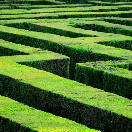 Labyrinth Of Nature by Jacek Tabisz on SoundCloud